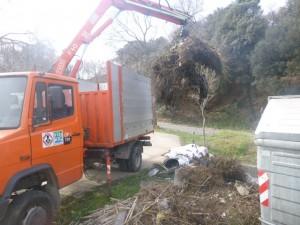 Treballs executats amb camió amb grapa forestal.